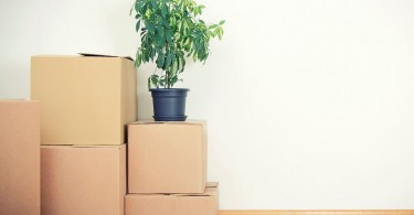 apartment moving in checklist