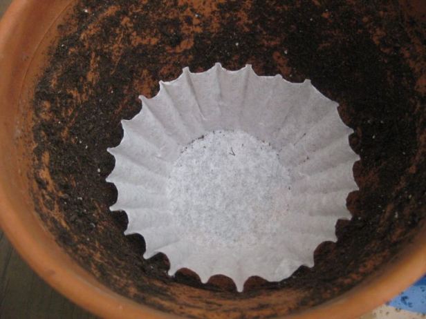 Coffee Filter Ideas for Your Home