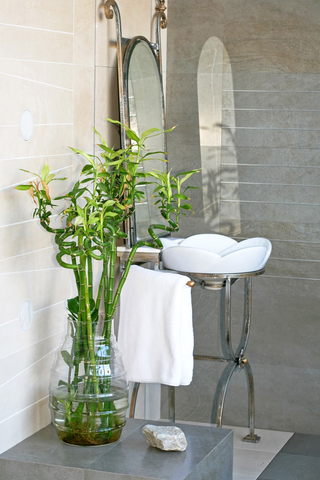 Lucky Bamboo For Small Spa Bathroom