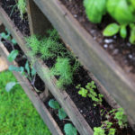 How to Make a DIY Vertical Pallet Herb Garden