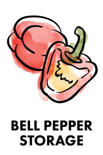 The Best Way to Store Vegetables: bell peppers