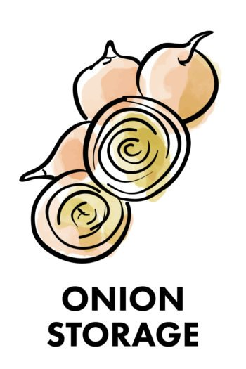 The Best Way to Store Vegetables: onions