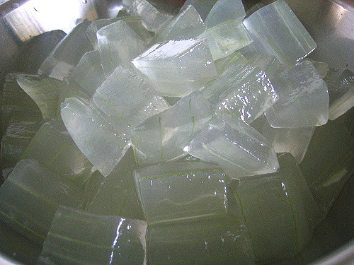 things you need for the beach: Aloe Vera Ice Cubes