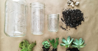 How to Make a Mason Jar Succulent Planter