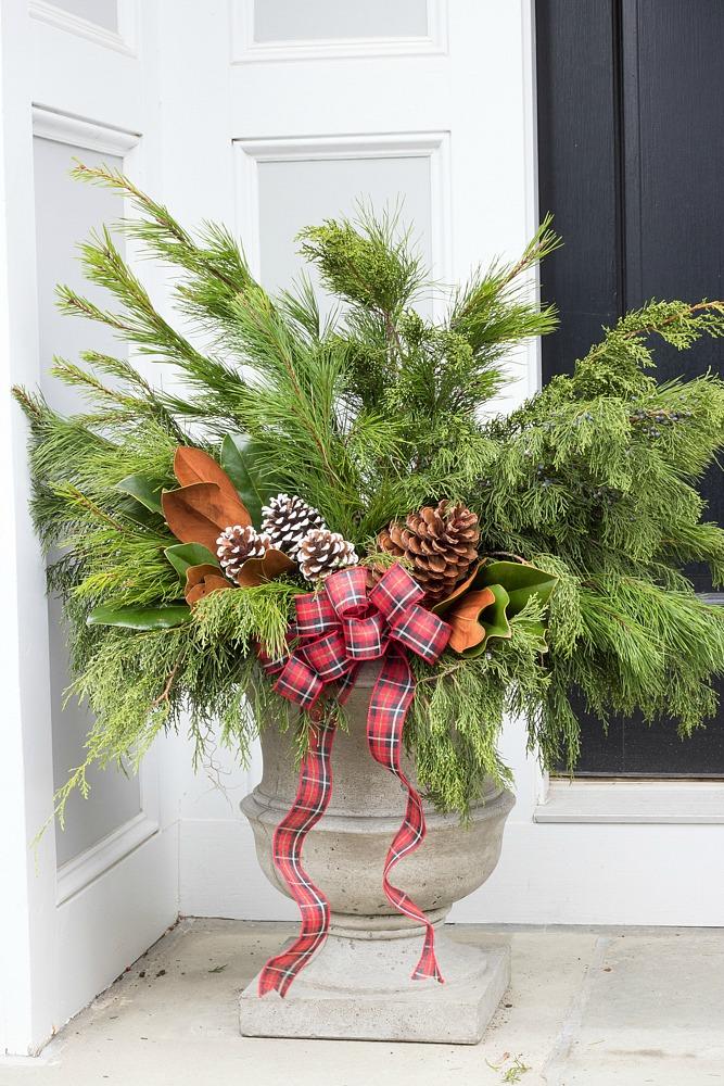 Holiday planter ideas
