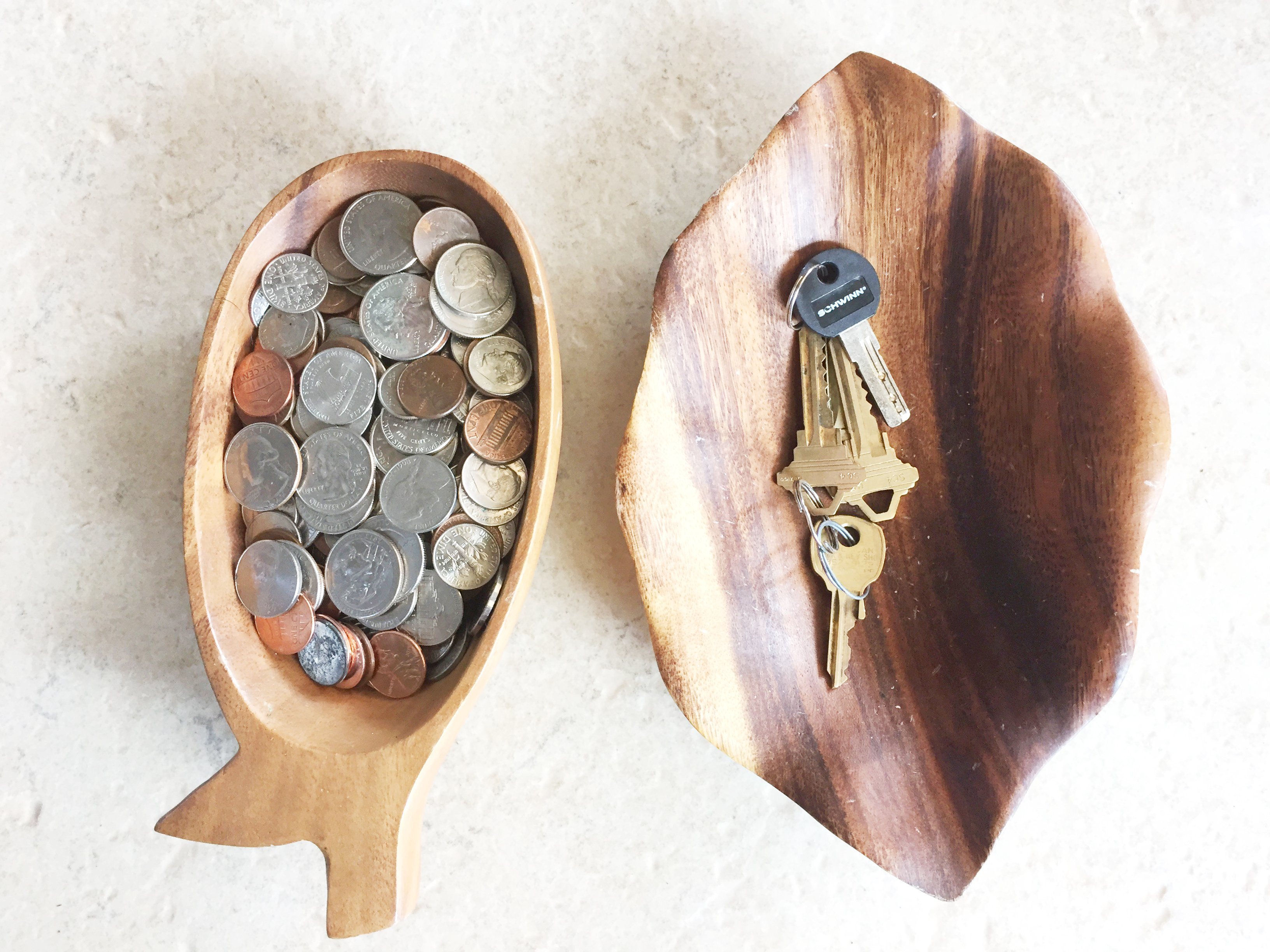 Why You Should Store Coins for Your Kids