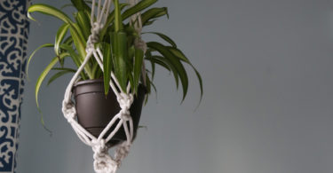 diy macrame hanging plant holder grey wall