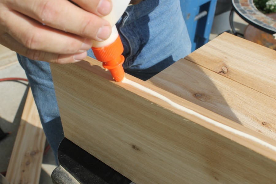 wood glue for DIY projects cedar board