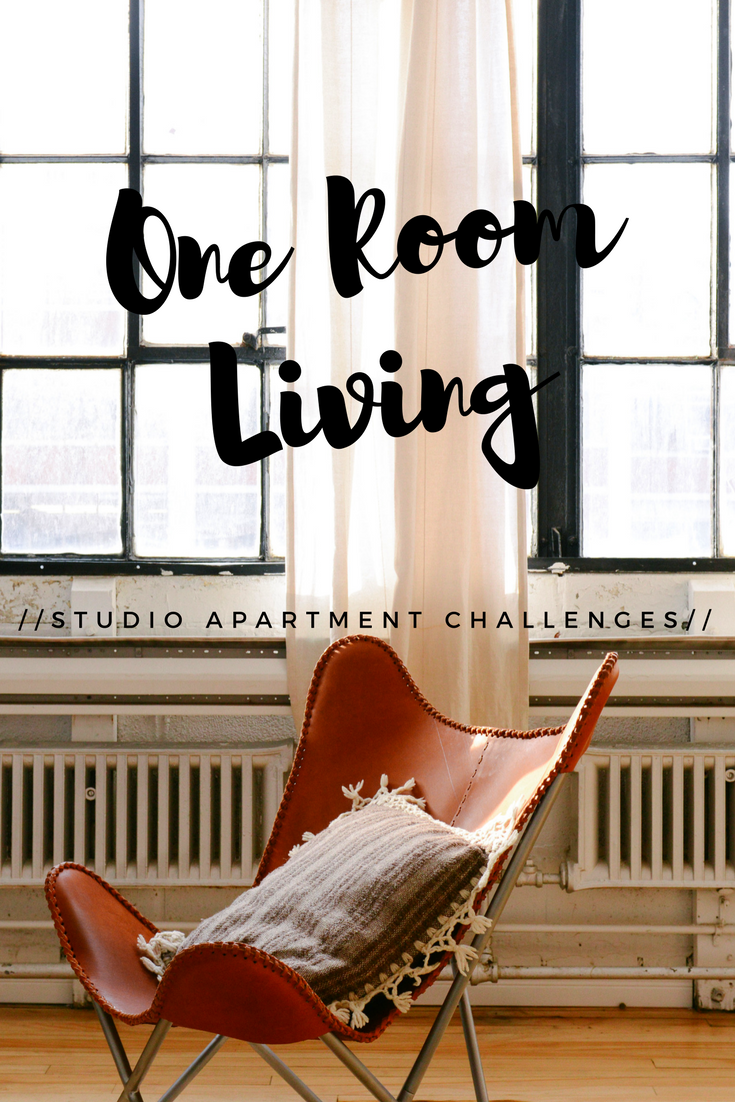 Attirant How To Live In One Room Studio Apartment Challenges Pin