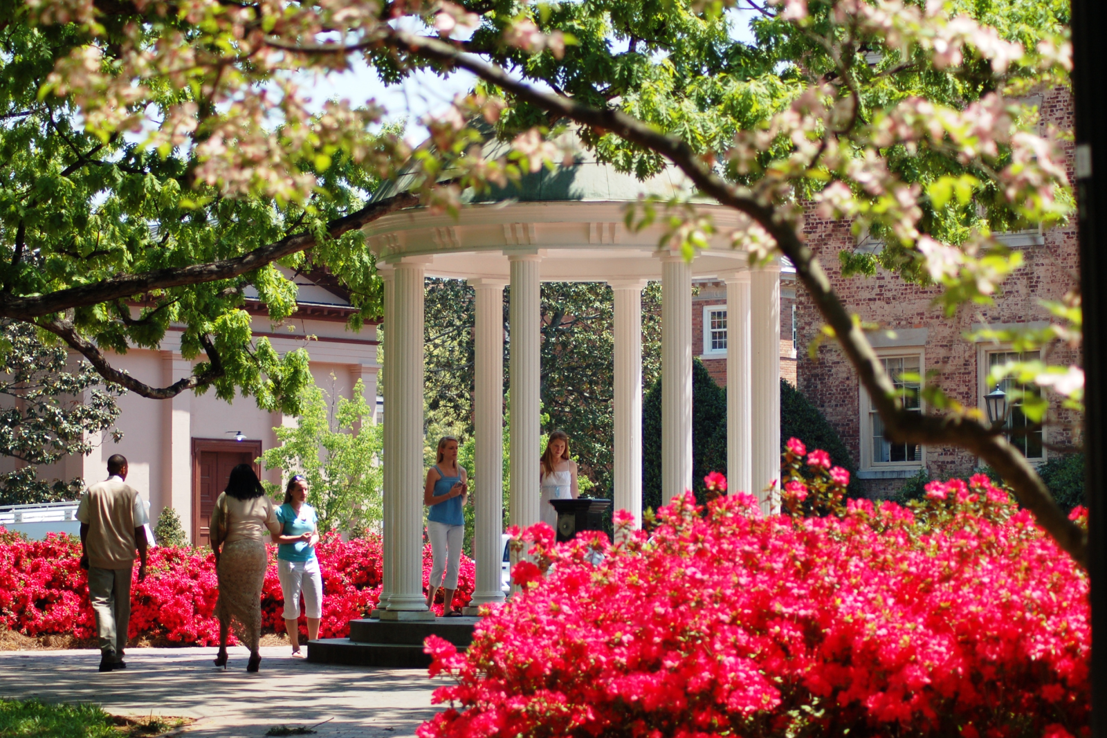 Schools and universities in Raleigh, NC - plaza, flowers