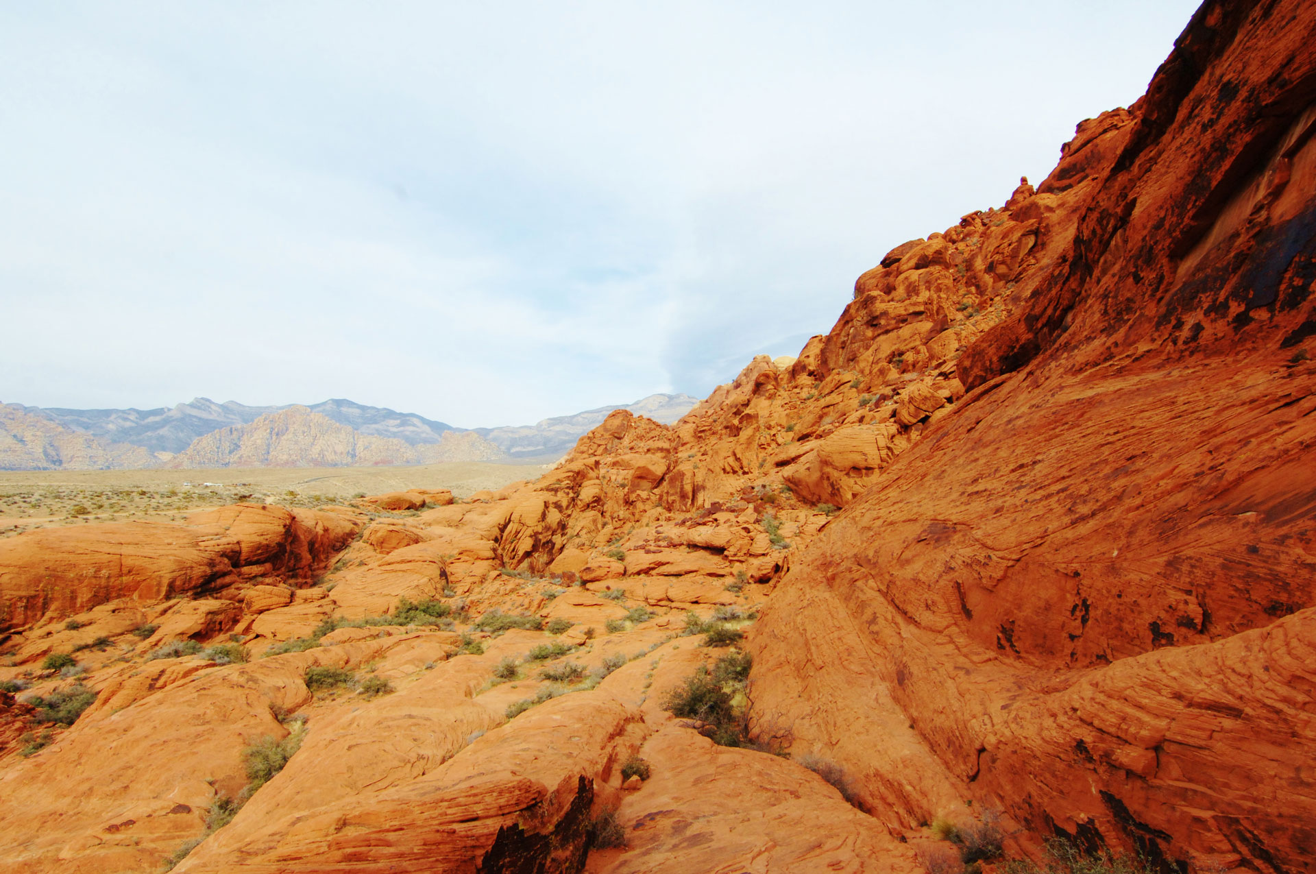Best Las Vegas Day Trips for New Residents - Red Rock Canyon Vista