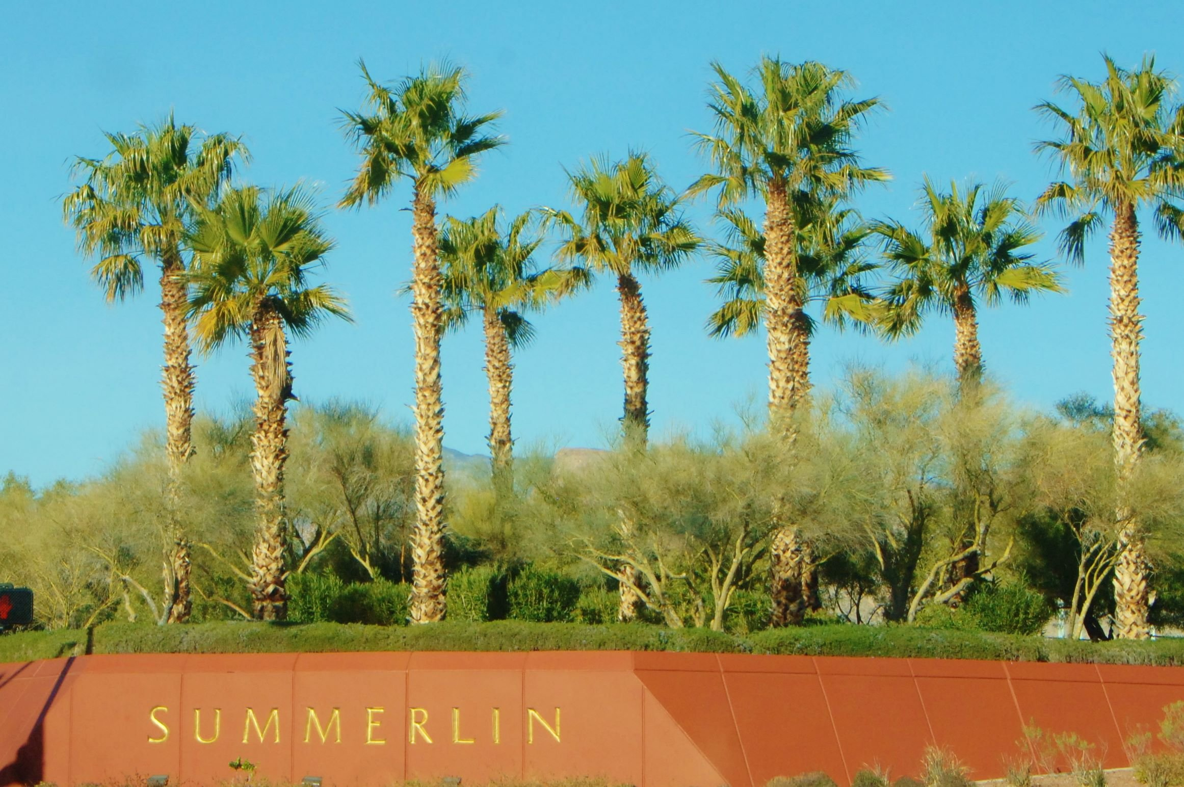 Retiring In Las Vegas   Best Neighborhoods   Summerlin