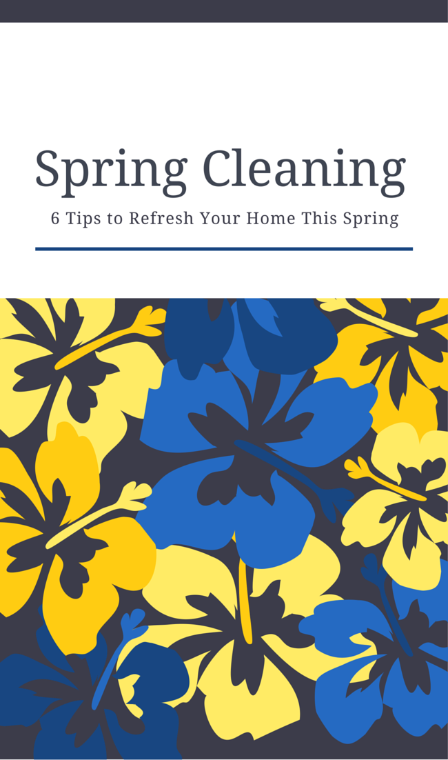 Spring Cleaning Tips - Pin