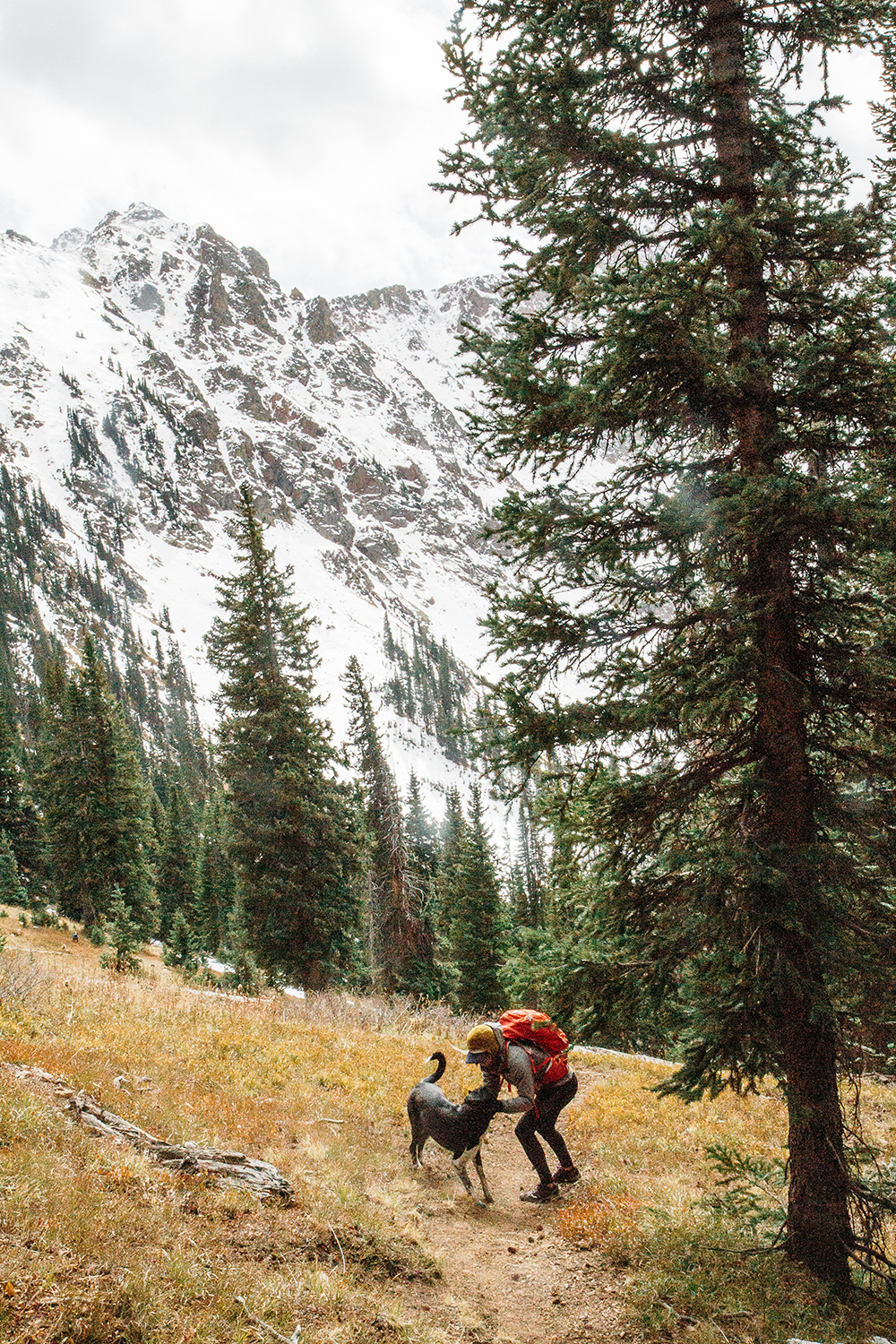 Best cities to live in Colorado: woman pets her dog in the forest with snowy mountains in the background