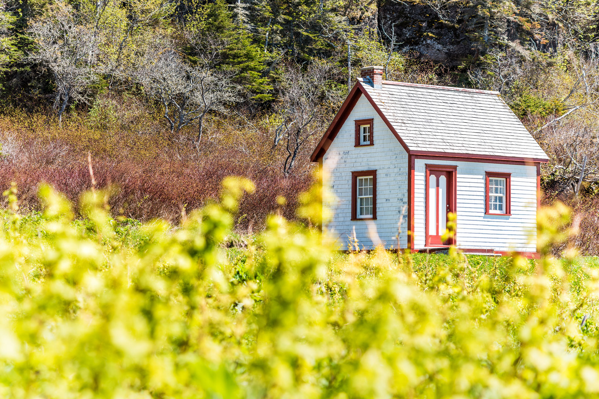 How to Downsize Your Home Plus Free Downsizing Checklist