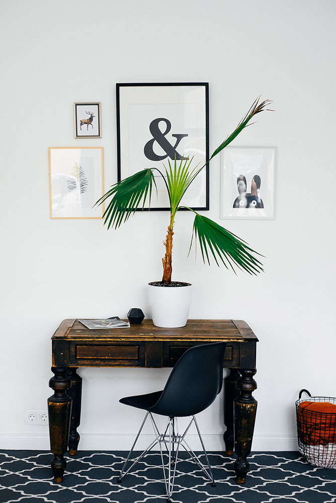 Room decoration ideas for couples - desk with plant and pictures hung on wall