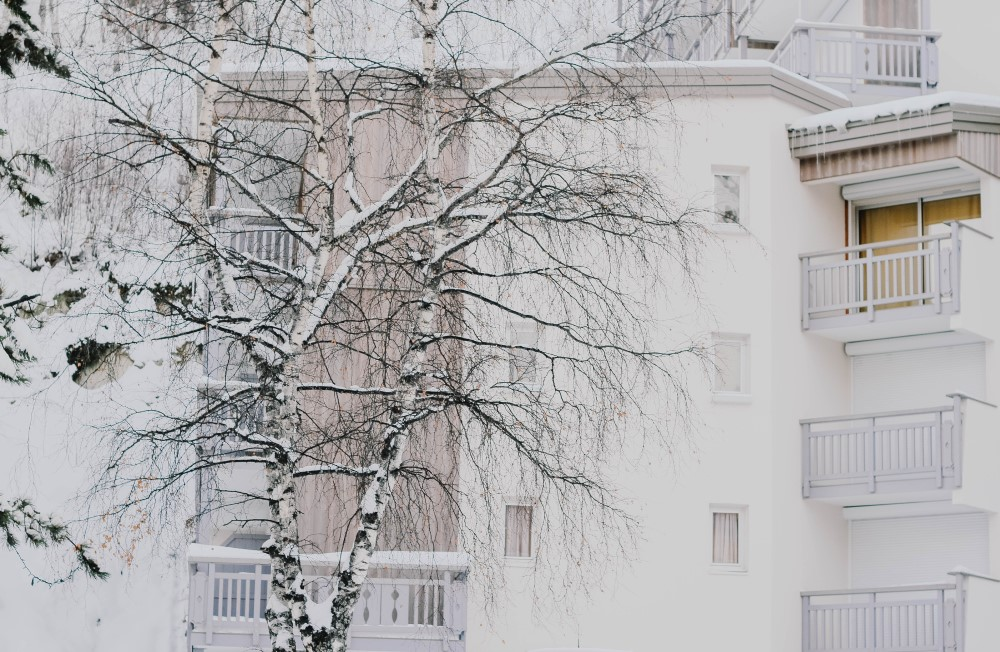 How to Move in Winter | Winter moving brings cold weather, slippery conditions and less home inventory, but you can address each of these.