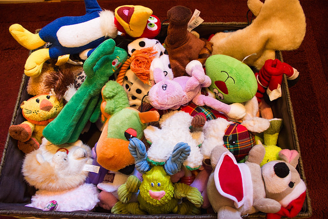 How to declutter and organize your dog and cat toys
